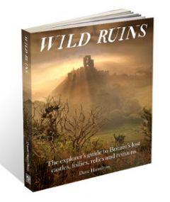Wild Things - Wild Ruins